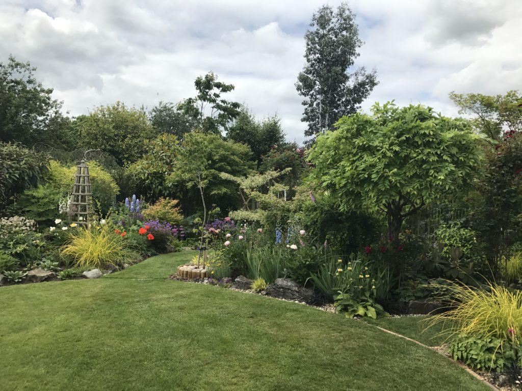 English garden イギリスの庭