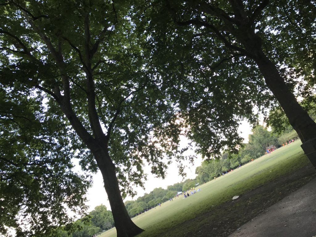 公園 ロンドン