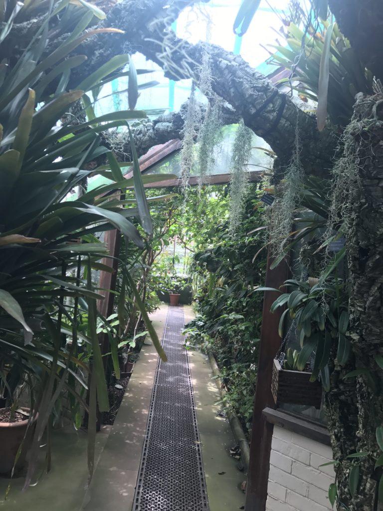 フィジックガーデン 温室