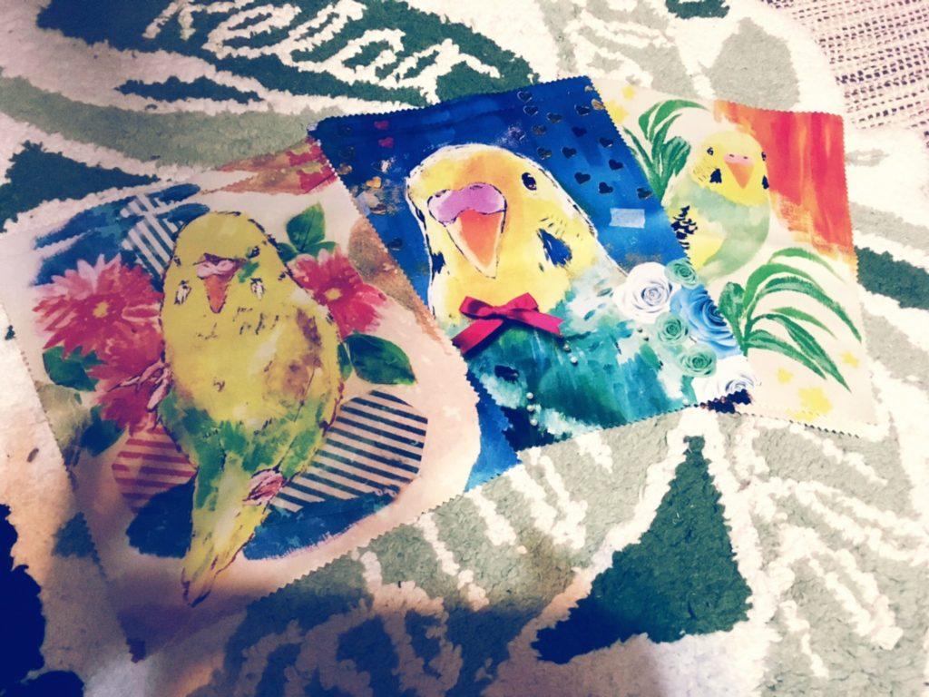 セキセイ インコ メガネ拭き palette
