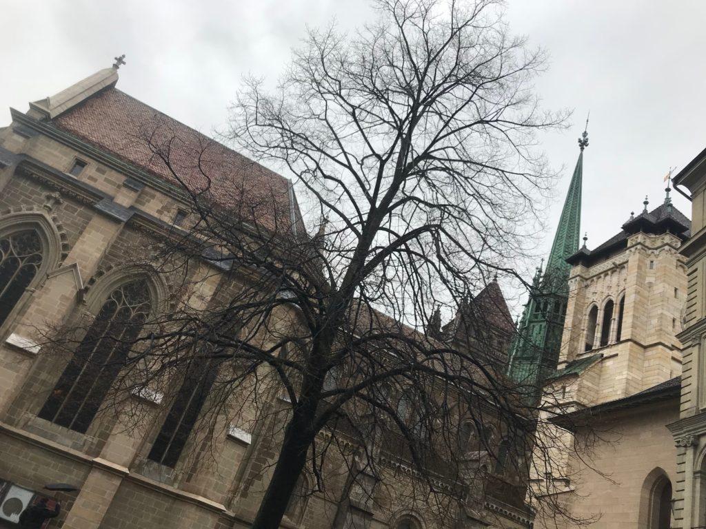 サン・ピエール大聖堂裏側